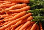 Продам картофель,  морковь,  свеклу опт