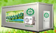 Гидропонное оборудование для выращивания готового корма. Костанай